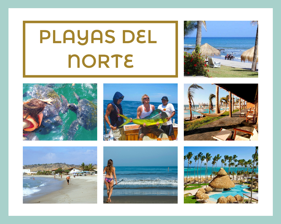PLAYAS DEL NORTE